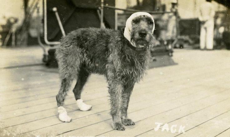 Jack_wounded_HMS Barham